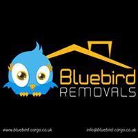 BlueBirdCargo