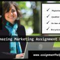 assignmenthelpexperts