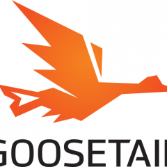 goosetailspaces
